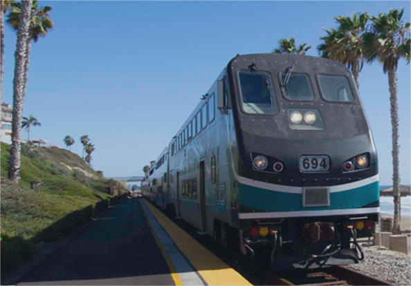 a train driving along a coastline flanked by palm trees