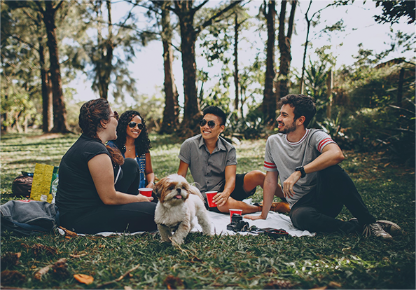 a group of people and a dog having a picnic in a park